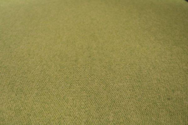dauphin-klappstuhl-gruen-rollbar-2-stueck-im-paket-weiss-gruen--stoff